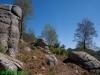 Monte Lepre - Sentiero
