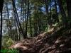 Monte Scuro - Sentiero versante S
